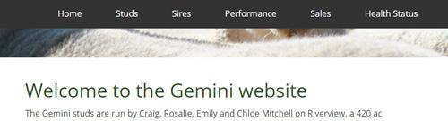 Gemini Prime Lambs