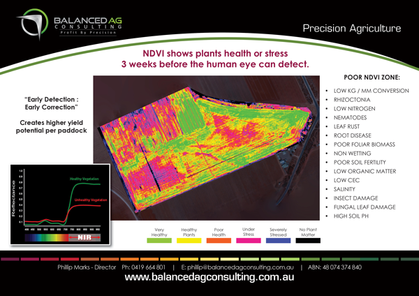 Balanced-Ag-Consulting---A4-Flyer#2_landscape