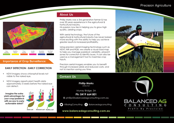 Balanced-Ag-Consulting-TrifoldRollFold-1
